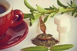 خواص دارویی گیاه استویا یا برگ شکر